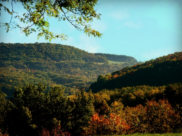 The Finger Lakes region.  Early morning when the fog is just starting to burn off the rolling hills.